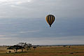 Balloon Safari 2012 06 01 3112 (7522683340).jpg