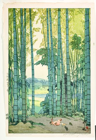 https://upload.wikimedia.org/wikipedia/commons/thumb/0/05/Bamboo_Grove_%285759026915%29.jpg/331px-Bamboo_Grove_%285759026915%29.jpg