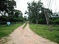 Bandipur Tiger Reserve - panoramio.jpg