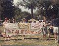 Banner on Mall -1.jpg