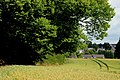 Barley field near the Giant's Ring, Belfast (2) - geograph.org.uk - 1939055.jpg