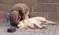 Beggar with dog.jpg