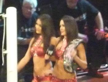 Bella Twins Divas Champion