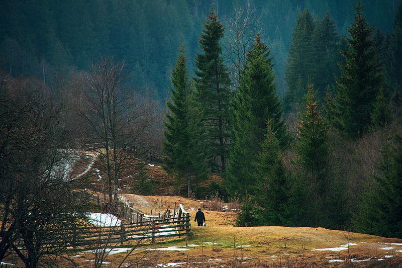 File:Berezhnytsya (Explore!).jpg