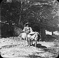 Berger avanais, vallée du Lys, 18 août 1892.jpg