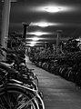 Bicycle Storage (220331655).jpeg