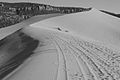 Big sand dune in B&W (8078515151).jpg