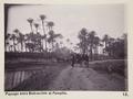 Bild från familjen von Hallwyls resa genom Egypten och Sudan, 5 november 1900 – 29 mars 1901 - Hallwylska museet - 91583.tif