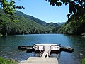 Biogradsko Jezero.jpg