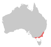 Gang-gang Cockatoo range (in red)