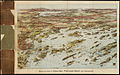 Birds eye view of Casco Bay, Portland, Maine, and surroundings (2675184791).jpg
