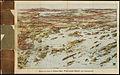 Birds eye view of Casco Bay, Portland, Maine, and surroundings (2675184791).jpg