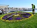 Blumenuhr am Bürkliplatz - Pflege der Neuanpflanzung durch einen Mitarbeiter von 'Grün Stadt Zürich' 2012-03-26 14-26-22 (P7000).jpg