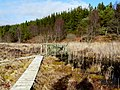 Boardwalk across Loch as Airde - geograph.org.uk - 1173479.jpg