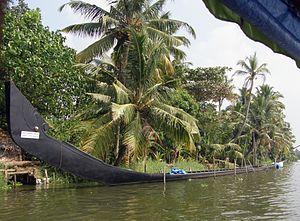 Chundan Vallam - Snake Boat
