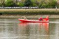 Boat Race 2014 (09).jpg