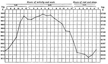 Изменение температуры тела в течение суток