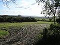 Bogay Glebe - geograph.org.uk - 1030664.jpg