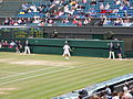 Bogdanovic Centre Court.JPG