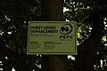 Bois d'Acren 05.jpg