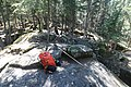 Bonsai Boulders Kananaskis Alberta Canada (26828561862).jpg