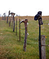 Boots on fence posts.jpg