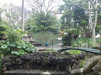 Province of Las Palmas - Botanic garden in Arucas