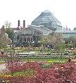 Botanischer Garten München 3.jpg