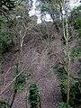 Bramber Castle - geograph.org.uk - 1203828.jpg