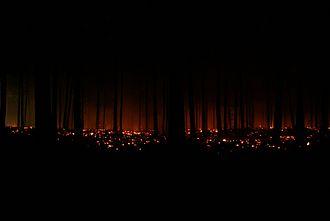 Strabrechtse Heide - The July 2010 fire