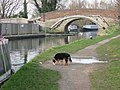Bridge 131 on the Grand Union Canal - geograph.org.uk - 1203851.jpg