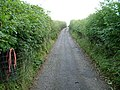 Bridlepath to Hebblethwaite Hall - geograph.org.uk - 1528466.jpg