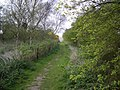 Bridleway at Morston Downs - geograph.org.uk - 413726.jpg