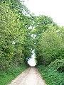 Bridleway to Darlingscott - geograph.org.uk - 1925698.jpg