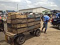 Bringing herrings to market at Tema harbour.jpg