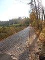 Brukowana droga do Nowej Wsi - panoramio.jpg
