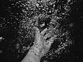 Bubble hands (Unsplash).jpg