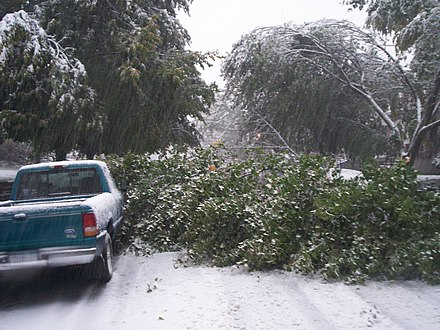 "Damage caused by Lake Storm ""Aphid"" in October 2006 Buffalo snow storm3.jpg"