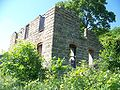 Building Ruins in Trempealeau2.jpg