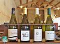Côtes du Rhône AOC - label AB.jpg