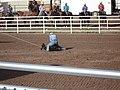 CFD Tie-down roping Cowboy.jpg