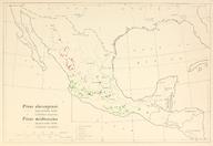 CL-50 Pinus durangensis & Pinus michoacana range map.png
