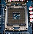 CPU Socket 775 T.jpg