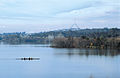 CSIRO ScienceImage 4275 Rowers early morning on Lake Burleigh Griffin Canberra ACT Profile of Parliament House buildings in background Taken late autumn.jpg
