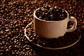 Café Forte.jpg