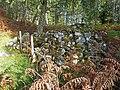 Cairn by the Glenmoriston Preacher's Footprints - geograph.org.uk - 994859.jpg