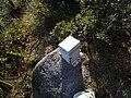 Caixa para relatos no topo do pico capivari.jpg