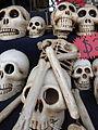Calaveras de día de muertos en Aguascalientes 2015 13.JPG