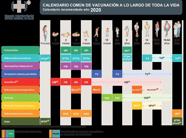Calendario común de vacunación a lo largo de toda la vida. España 2020.png