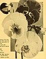 California gardening (1932) (20326602510).jpg